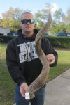 40 inch Single African Kudu Horn -weather worn and damaged (You are buying the horn in the photos) for $40.00