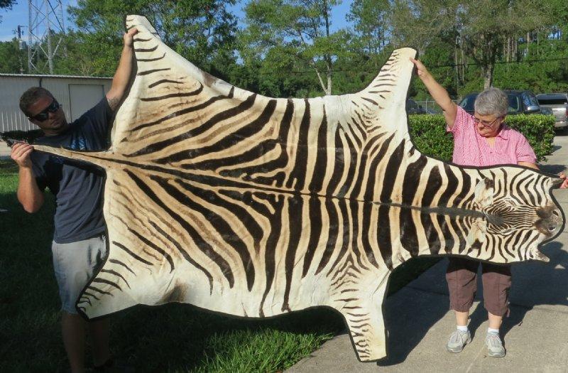 Zebra Hide Rug Glorema