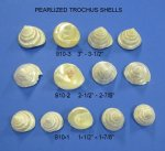 Wholesale Pearlized...