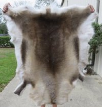 reindeer skins hides hand selected