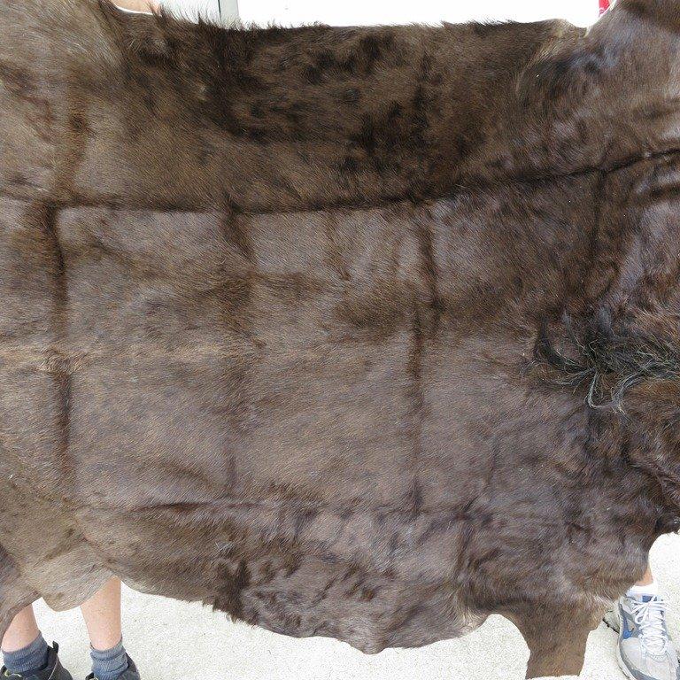Genuine African Black Wildebeest Skin Rug
