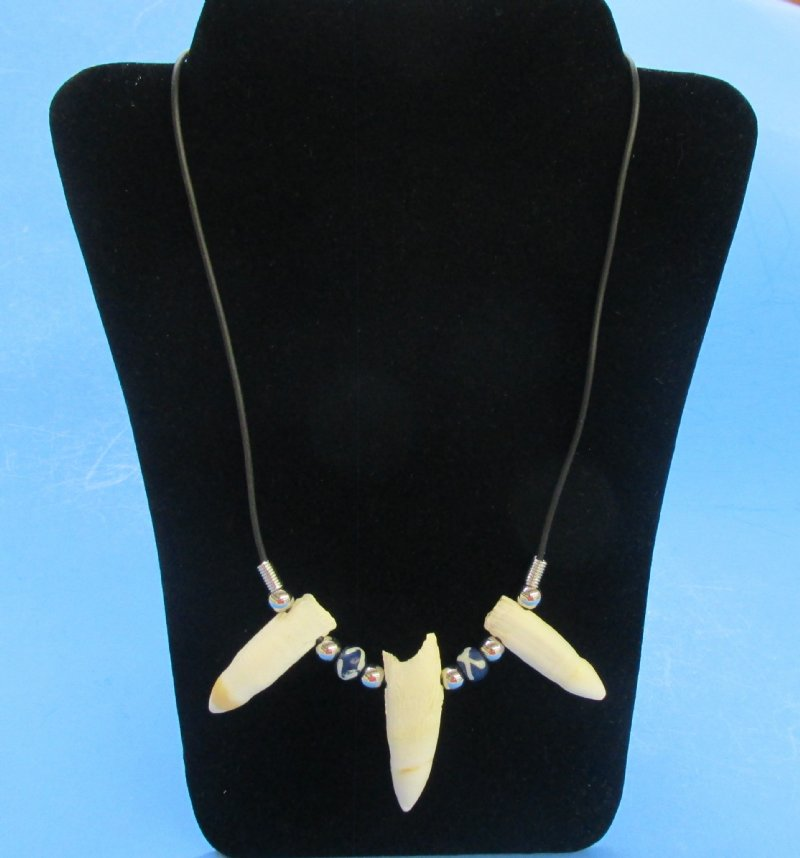 Crocodile Tooth Necklace: Wholesale Alligator Tooth Necklace With 3 Gator Teeth