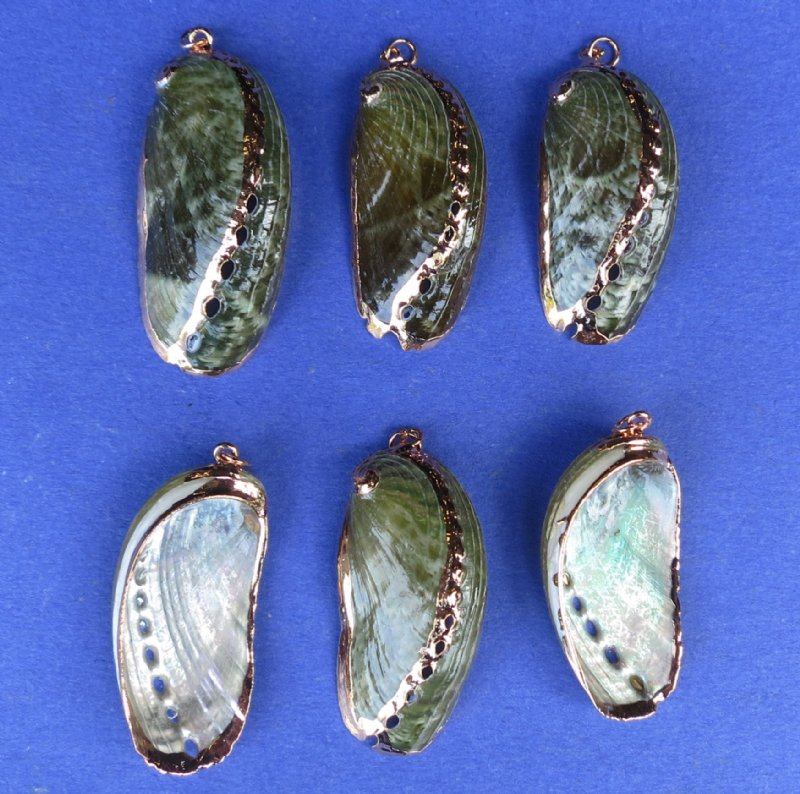 Wholesale green abalone seashell pendants copper undertone wholesale electroplated green abalone seashell pendants green donkey ear abalone shell pendants 1 14 to 2 long 25 53 each aloadofball