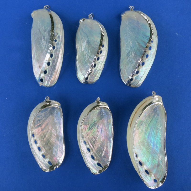 Wholesale silver trimmed pearlized donkey ears wholesale silver trimmed pearlized donkey ear abalone shell pendants bag of 25 58 each bag of 100 53 each aloadofball Choice Image