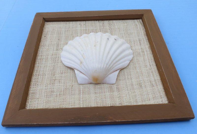 8 X 8 Wholesale Square Framed Irish Deep Shell